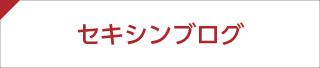 セキシンブログ