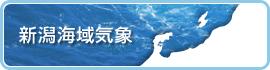 新潟海域気象