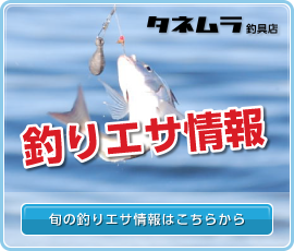 釣りエサ情報